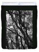 Trees Beautiful Trees Duvet Cover