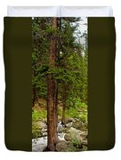 Trees By The Stream Duvet Cover