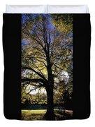 Trees During Autumn Duvet Cover