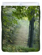 Trees In The Woods In The Early Morning Duvet Cover