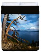 Trees On The Crater Duvet Cover