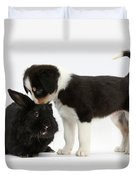 Tricolor Border Collie Pup With Black Duvet Cover
