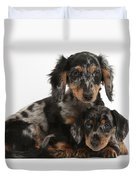 Tricolor Dachshund Puppies Duvet Cover