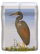 Tricolor Heron Duvet Cover