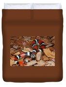Tricolor Hognose Snake Duvet Cover