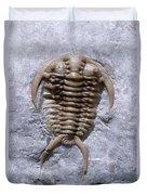 Trilobite Duvet Cover