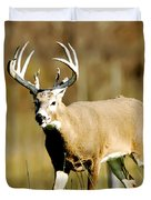 Trophy Buck Duvet Cover
