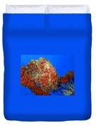 Tropical Fish Stone-fish Duvet Cover