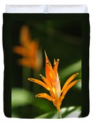 Tropical Orange Heliconia Flower Duvet Cover by Elena Elisseeva