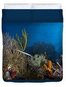 Trumpetfish, Belize Duvet Cover
