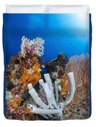 Tube Sponge On Coral Reef In Raja Duvet Cover