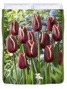 Tulip Tulipa Sp Key West Variety Flowers Duvet Cover