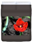Tulips Blooming Duvet Cover