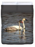 Tundra Swan And Cygnet Duvet Cover