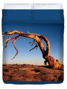 Twilight View Of A Jeffrey Pine Tree Duvet Cover