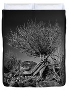 Twisted Beauty - Bw Duvet Cover by Christopher Holmes