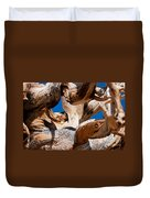 Twisted Bristlecone Pine Duvet Cover