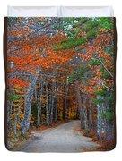 Twisting Road Of Fall Duvet Cover