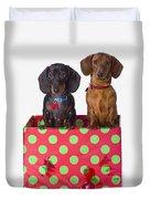 Two Dachshund Puppies Inside A Polka Duvet Cover
