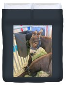 Two Donkeys Eating Duvet Cover by Donna Munro