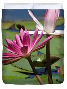 Two Graceful Water Lilies Duvet Cover by Sabrina L Ryan