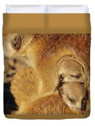 Two Meerkat Pups Sleep Under The Arm Duvet Cover