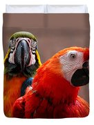 Two Parrots Closeup Duvet Cover