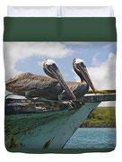 Two Pelicans Pelecanus Occidentalis On Duvet Cover