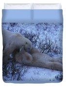 Two Polar Bears Wrestle In The Snow Duvet Cover