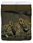 Two Sleepy Four-month-old Leopard Cubs Duvet Cover