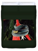 Two-striped Forest Pit Viper Bothrops Duvet Cover