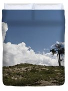 Two Trees Of Many Glacier Duvet Cover
