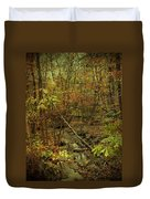 Unami Creek Feeder Stream In Autumn - Green Lane Pa Duvet Cover