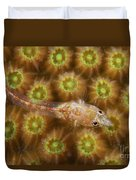 Unknown Gobie Blenny Found At 48 Feet Duvet Cover