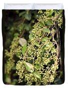 Unripened Inkberries Duvet Cover