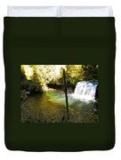 Upper Butte Creek Falls And Plunge Pool Duvet Cover