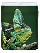 Veiled Chameleon Chamaeleo Calyptratus Duvet Cover by Ingo Arndt