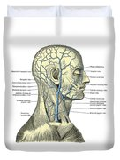 Veins Of The Head And Neck Duvet Cover