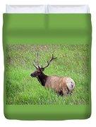 Velvet Bull Elk Duvet Cover