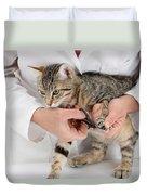 Vet Clipping Kittens Claws Duvet Cover