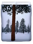 View Of A Ponderosa Pine Surrounded Duvet Cover