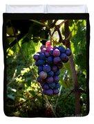 Vineyard 31 Duvet Cover