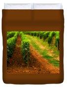 Vineyard In Burgundy France Duvet Cover