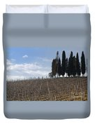 Vineyard With Cypress Trees Duvet Cover