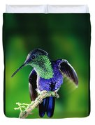 Violet-crowned Woodnymph Thalurania Duvet Cover