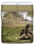 Volcan Alcedo Giant Tortoise Geochelone Duvet Cover