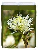 Wasp On Fothergilla 1 Duvet Cover
