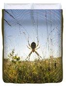 Wasp Spider Argiope Bruennichi In Web Duvet Cover