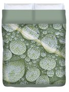 Water Droplets On Leaf, Annapolis Duvet Cover