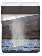 Water From A Whale Blowhole Duvet Cover
